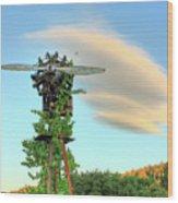 Vineyard Propeller Wood Print