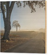 Vineyard Road Wood Print