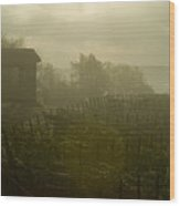 Vineyards Beside A Villa In The Fog Wood Print