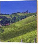 Vineyards Of Jerusalem Slovenia Wood Print