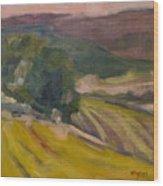 Vineyards Of The Luberon Wood Print