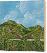 Vineyards Of The Wachau Valley Wood Print