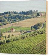 Vineyards With Stone House, Tuscany, Italy Wood Print