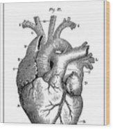 Vintage Anatomical Heart Wood Print