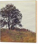 Vintage Autumn Wood Print