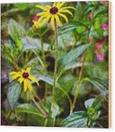 Vintage Black-eyed Susans Wood Print