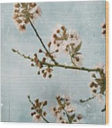 Vintage Blossoms Wood Print