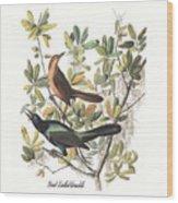 Vintage Boat-tailed Grackles Audubon Wood Print