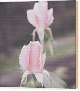 Vintage Double Rose Bud Wood Print