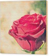 Vintage Film Effect Rose. Wood Print