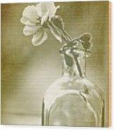 Vintage Geranium Wood Print