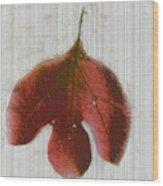 Vintage Leaf Wood Print