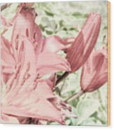 Vintage Lilly Delight Wood Print