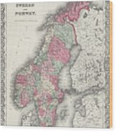 Vintage Map Of Norway And Sweden - 1865 Wood Print