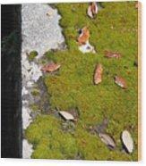 Vintage Moss Wood Print