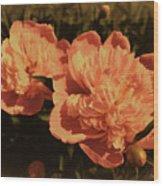 Vintage Peonies Wood Print