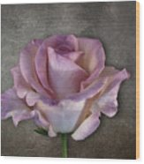 Vintage Rose On Gray Wood Print