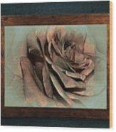 Vintage Rose On Old Wall 2 By Kaye Menner Wood Print