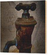 Vintage Water Faucet Wood Print by Heinz G Mielke