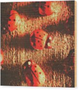 Vintage Wooden Ladybugs Wood Print