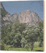 Vintage Yosemite Wood Print