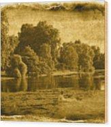 Vintage06 Wood Print