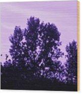 Violet And Black Trees  Wood Print