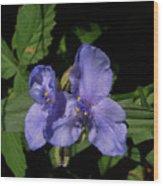 Violet Blooms Wood Print