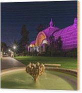 Violet Castles Wood Print