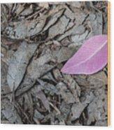 Violet Leaf On The Ground  Wood Print