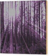 Violet Rays Wood Print