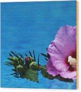 Violet Satin Wood Print