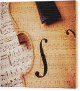 Violin And Musical Notes Wood Print