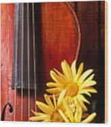 Violin With Daises  Wood Print