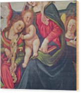 Virgin And Child And Angel Musicians  Wood Print by Piero di Cosimo