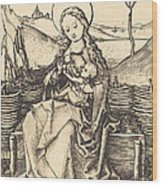 Virgin And Child On A Grassy Bench Wood Print