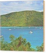 Virgin Island Getaway Wood Print