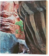 Virgin River Narrows Wood Print