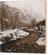 Virgin River Running I Wood Print