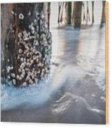 Virginia Beach Pier Wood Print