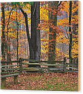 Virginia Country Roads - A Seat With A View - Autumn Colorfest No. 1 Near Mabry Mill - Floyd County Wood Print