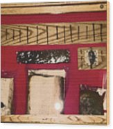Virginia Dale - Burn Relics In Red Wood Print