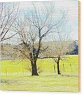 Virginia Dale-three Trees Wood Print