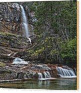 Virginia Falls In The Pool Wood Print