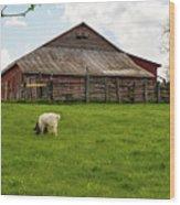 Virginia Farmyard Wood Print