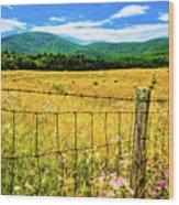 Virginia Fields Of Green Wood Print