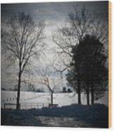 Virginia Snow Wood Print by Joyce Kimble Smith
