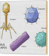 Virus Shapes, Illustration Wood Print