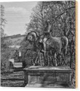 Viscount Gough On Horseback. Wood Print