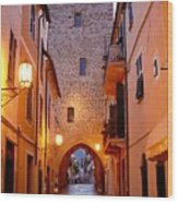 Visions Of Italy Archway Wood Print